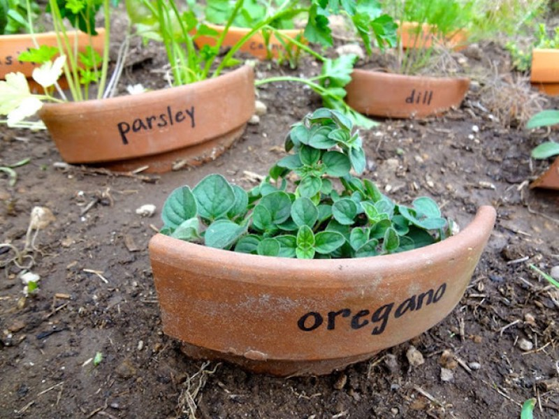 7 Life Hacks that Will Make Working in a Garden Easier